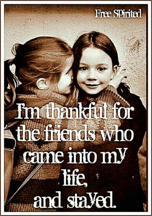 Friends, Life, and Memes: Free SPirited  Inthankful for  the friends who  came into my  life,  and staVed.