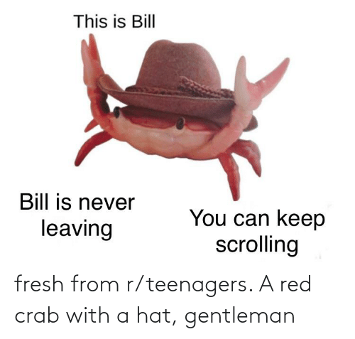 R Teenagers: fresh from r/teenagers. A red crab with a hat, gentleman