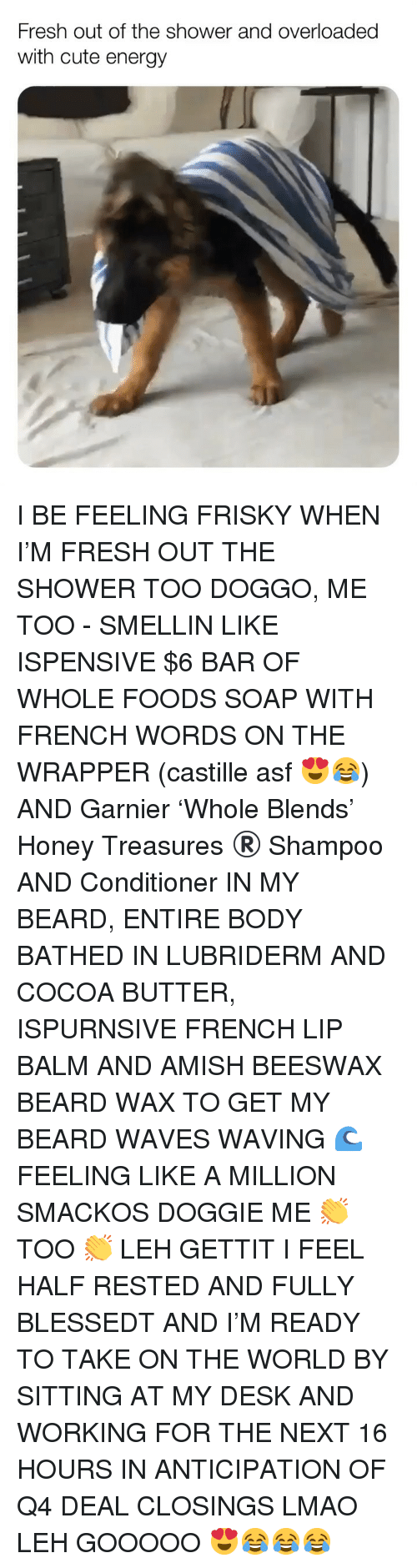 Beard, Cute, and Energy: Fresh out of the shower and overloaded  with cute energy I BE FEELING FRISKY WHEN I'M FRESH OUT THE SHOWER TOO DOGGO, ME TOO - SMELLIN LIKE ISPENSIVE $6 BAR OF WHOLE FOODS SOAP WITH FRENCH WORDS ON THE WRAPPER (castille asf 😍😂) AND Garnier 'Whole Blends' Honey Treasures ®️ Shampoo AND Conditioner IN MY BEARD, ENTIRE BODY BATHED IN LUBRIDERM AND COCOA BUTTER, ISPURNSIVE FRENCH LIP BALM AND AMISH BEESWAX BEARD WAX TO GET MY BEARD WAVES WAVING 🌊 FEELING LIKE A MILLION SMACKOS DOGGIE ME 👏 TOO 👏 LEH GETTIT I FEEL HALF RESTED AND FULLY BLESSEDT AND I'M READY TO TAKE ON THE WORLD BY SITTING AT MY DESK AND WORKING FOR THE NEXT 16 HOURS IN ANTICIPATION OF Q4 DEAL CLOSINGS LMAO LEH GOOOOO 😍😂😂😂