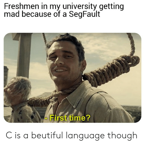 freshmen: Freshmen in my university getting  mad because of a SegFault  First time? C is a beutiful language though