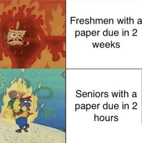 freshmen: Freshmen with a  paper due in 2  weeks  Seniors with a  paper due in 2  hours