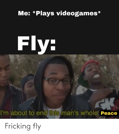 fly: Fricking fly
