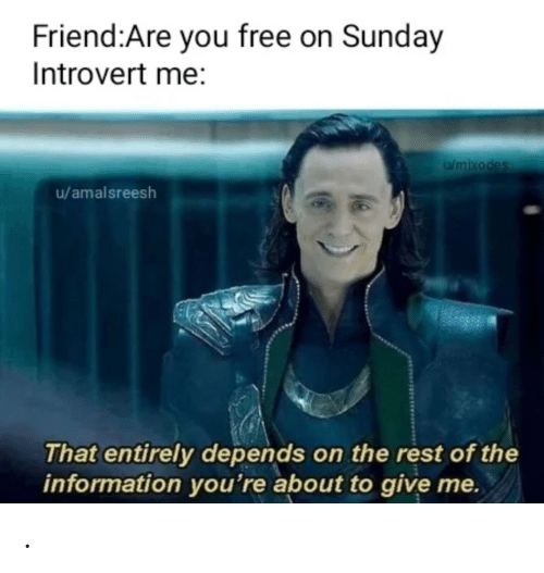 introvert: Friend:Are you free on Sunday  Introvert me:  Wmixodes  u/amalsreesh  That entirely depends on the rest of the  information you're about to give me. .