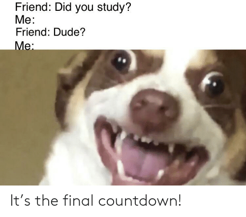 Countdown, Dude, and Reddit: Friend: Did you study?  Мe:  Friend: Dude?  Mе: It's the final countdown!