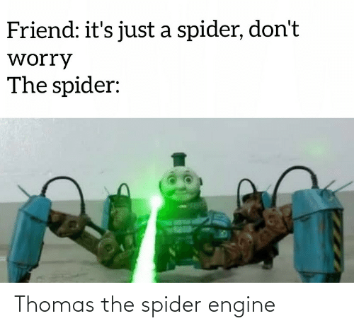 thomas: Friend: it's just a spider, don't  worry  The spider: Thomas the spider engine