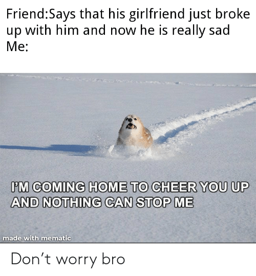 Home, Girlfriend, and Sad: Friend:Says that his girlfriend just broke  up with him and now he is really sad  Ме:  PM COMING HOME TO CHEER YOU UP  AND NOTHING CAN STOP ME  made with mematic Don't worry bro