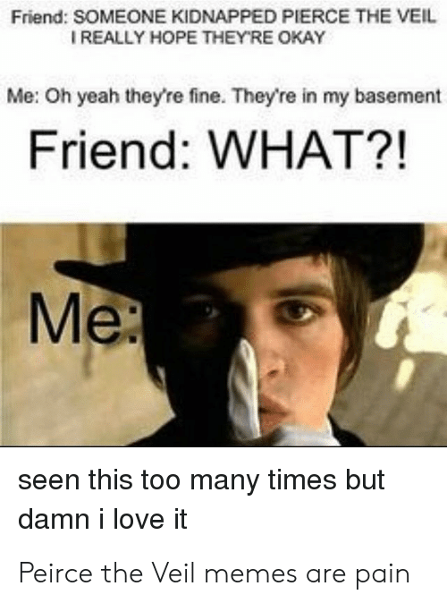 Damn I Love: Friend: SOMEONE KIDNAPPED PIERCE THE VEIL  IREALLY HOPE THEYRE OKAY  Me: Oh yeah they're fine. They're in my basement  Friend: WHAT?!  Me  seen this too many times but  damn i love it Peirce the Veil memes are pain