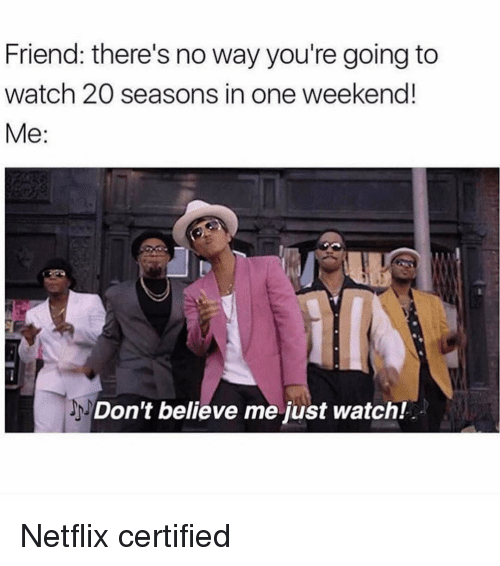 Dont Believe Me Just Watch: Friend: there's no way you're going to  watch 20 seasons in one weekend!  Me  Don't believe me just watch! Netflix certified