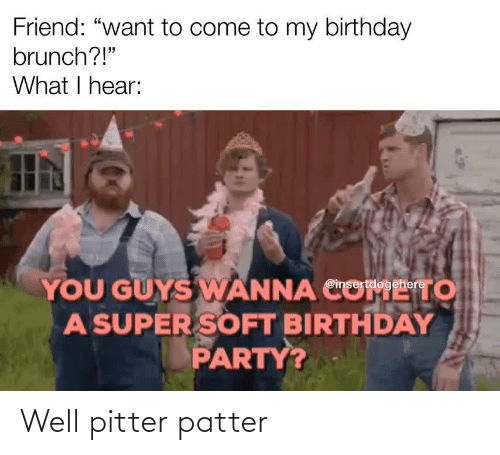 "hear: Friend: ""want to come to my birthday  brunch?!""  What I hear:  YOU GUYS WANNA CO  A SUPER SOFT BIRTHDAY  PARTY?  то  @insertdogehere Well pitter patter"
