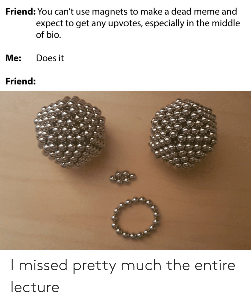 Meme, The Middle, and Make A: Friend: You can't use magnets to make a dead meme and  expect to get any upvotes, especially in the middle  of bio.  Me:  Does it  Friend: I missed pretty much the entire lecture