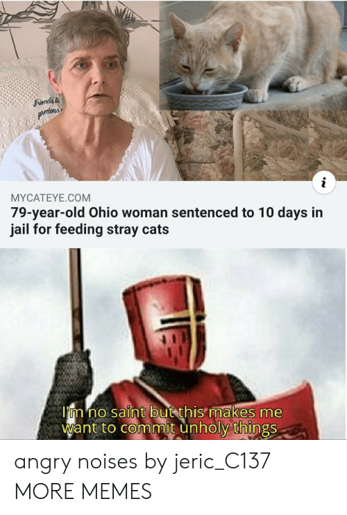 stray cats: Friends  prtious  MYCATEYE.COM  79-year-old Ohio woman sentenced to 10 days in  jail for feeding stray cats  I'm no saint but this makes me  Want to commit unholy things angry noises by jeric_C137 MORE MEMES