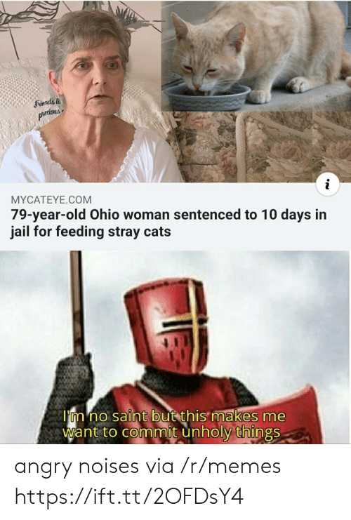 stray cats: Friends  prtious  MYCATEYE.COM  79-year-old Ohio woman sentenced to 10 days in  jail for feeding stray cats  I'm no saint but this makes me  Want to commit unholy things angry noises via /r/memes https://ift.tt/2OFDsY4