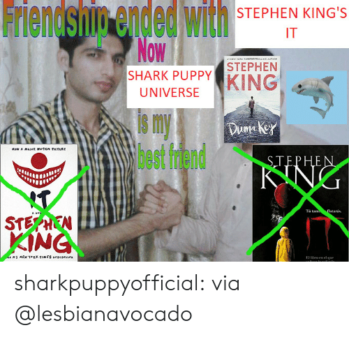 Ended: Friendsnin ended with  Now  STEPHEN KING'S  IT  M  ORK esvesysUNG MTHO  STEPHEN  SHARK PUPPY  KING  UNIVERSE  s my  lhest fdend  Duma key  Now A MAJR mofioN ctURE  STEPHEN  KING  T  $TEPHEN  KING  Tà tam  flotarás.  Hite  MEW TORK TIMES srsescrs  ro en el que  E sharkpuppyofficial:  via @lesbianavocado
