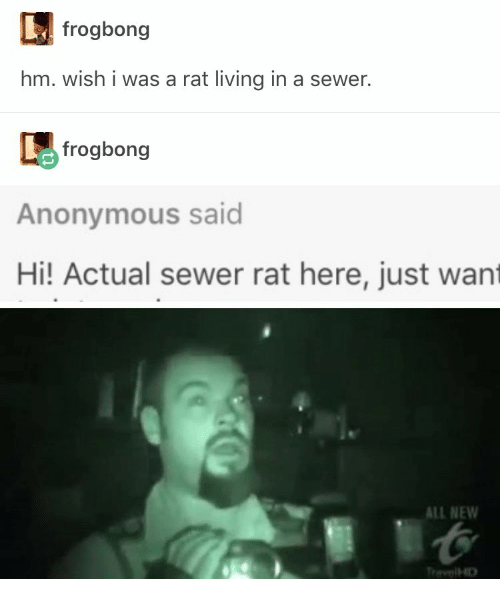 sewer: frogbong  hm. wish i was a rat living in a sewer.  frogbong  Anonymous said  Hi! Actual sewer rat here, just want  ALL NEW