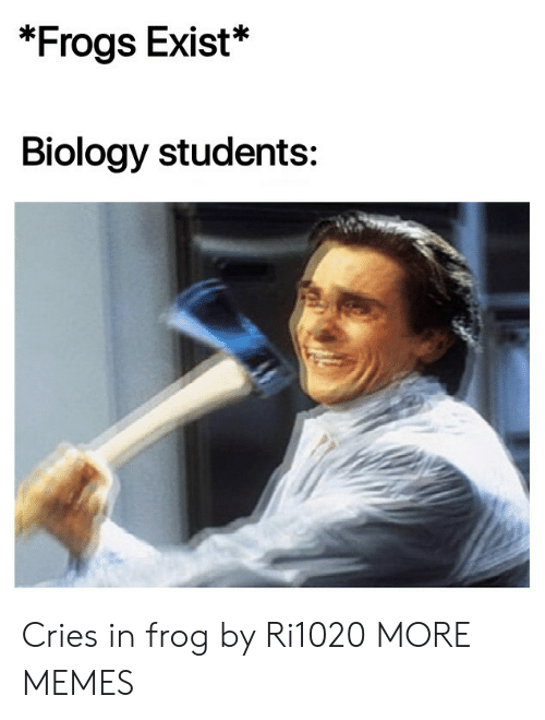 frogs: *Frogs Exist*  Biology students: Cries in frog by Ri1020 MORE MEMES