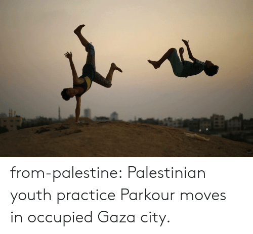 Tumblr, Blog, and Http: from-palestine:   Palestinian youth practice Parkour moves in occupied Gaza city.