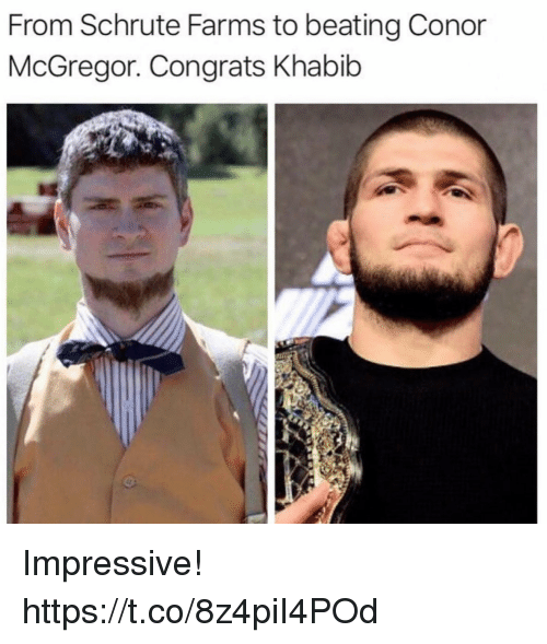 Schrute: From Schrute Farms to beating Conor  McGregor. Congrats Khabib Impressive! https://t.co/8z4piI4POd