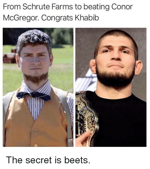Schrute: From Schrute Farms to beating Conor  McGregor. Congrats Khabib The secret is beets.