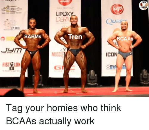 Memes, Work, and Fuck: FUCK  CARDIO  LIPOX  DER  IFBB  SARMs  Tren  BCAAs  MUSCLE  ICON  RIST LOK Tag your homies who think BCAAs actually work