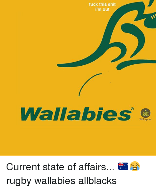 state of affairs: fuck this shit  i'm out  Wallabies  MEMES  Instagram Current state of affairs... 🇦🇺😂 rugby wallabies allblacks
