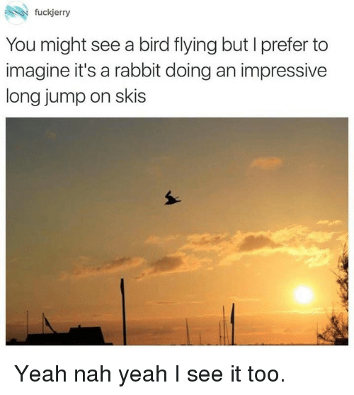 birds flying: fuckjerry  You might see a bird flying but I prefer to  imagine it's a rabbit doing an impressive  long jump on skis Yeah nah yeah I see it too.