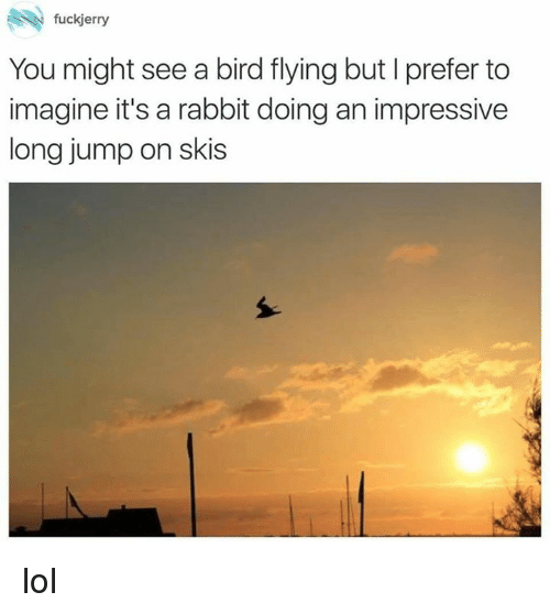 birds flying: fuckjerry  You might see a bird flying but l prefer to  imagine it's a rabbit doing an impressive  long jump on skis lol