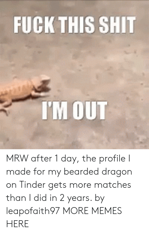 Bearded: FUCKTHIS SHIT  I'M OUT MRW after 1 day, the profile I made for my bearded dragon on Tinder gets more matches than I did in 2 years. by leapofaith97 MORE MEMES HERE