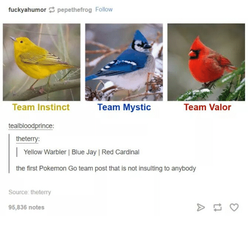 Team Instinct: fuckyahumor pepethefrog Follow  Team Valor  Team Instinct  Team Mystic  teal bloodprince  the terry:  Yellow Warbler Blue Jay IRed Cardinal  the first Pokemon Go team post that is not insulting to anybody  Source the terry  95,836 notes
