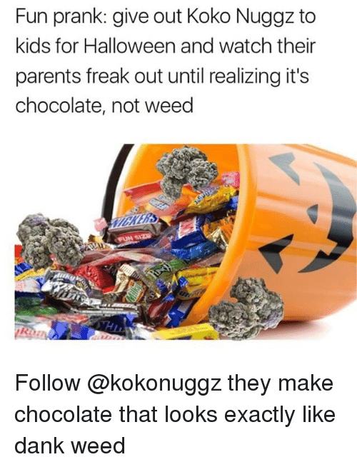 Fun Prank: Fun prank: give out Koko Nuggz to  kids for Halloween and watch their  parents freak out until realizing it's  chocolate, not weed Follow @kokonuggz they make chocolate that looks exactly like dank weed