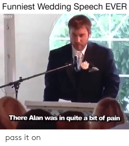 Memes, Quite, and Wedding: Funniest Wedding Speech EVER  ssy  There Alan was in quite a bit of pain pass it on