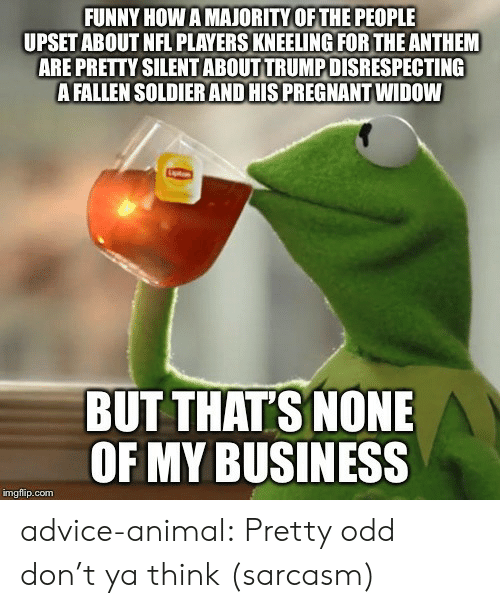 But Thats None Of My Business: FUNNY HOW A MAJORITY OF THE PEOPLE  UPSET ABOUT NFL PLAYERS KNEELING FOR THE ANTHEM  ARE PRETTY SILENT ABOUT TRUMP DISRESPECTING  A FALLEN SOLDIER AND HIS PREGNANT WIDOW  BUT THAT'S NONE  OF MY BUSINESS  imgflip.com advice-animal:  Pretty odd don't ya think (sarcasm)