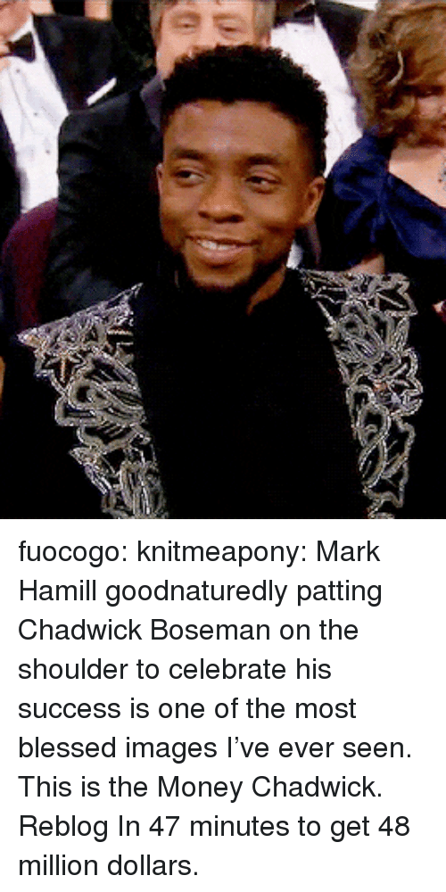 Mark Hamill: fuocogo: knitmeapony: Mark Hamill goodnaturedly patting Chadwick Boseman on the shoulder to celebrate his success is one of the most blessed images I've ever seen. This is the Money Chadwick. Reblog In 47 minutes to get 48 million dollars.