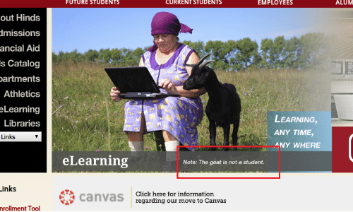 Move To: FUTURE STUDENTS  CURRENT STUDENTS  EMPLOYEES  ALUM  out Hinds  dmissions  ancial Aid  s Catalog  partments  Athletics  eLearning  LEARNING,  Libraries  ANY TIME,  Links  ANY WHERE  eLearning  Note: The goat is not a student.  Links  Click here for information  canvaS regarding our move to Canvas  nrollment Tool