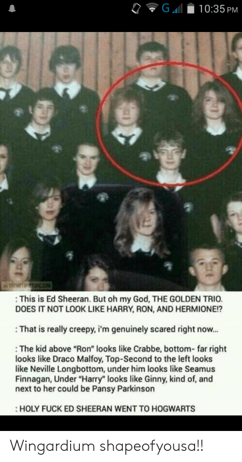 "trio: G  10:35 PM  TREMET MPTURE cOM  This is Ed Sheeran. But oh my God, THE GOLDEN TRIO.  DOES IT NOT LOOK LIKE HARRY, RON, AND HERMIONE!?  That is really creepy, i'm genuinely scared right now...  The kid above ""Ron"" looks like Crabbe, bottom- far right  looks like Draco Malfoy, Top-Second to the left looks  like Neville Longbottom, under him looks like Seamus  Finnagan, Under ""Harry"" looks like Ginny, kind of, and  next to her could be Pansy Parkinson  HOLY FUCK ED SHEERAN WENT TO HOGWARTS Wingardium shapeofyousa!!"