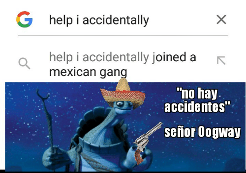 "No Hay: G help i accidentally  help i accidentally joined a  mexican gang  ""no hay.  accidentes""  señor Oogway"