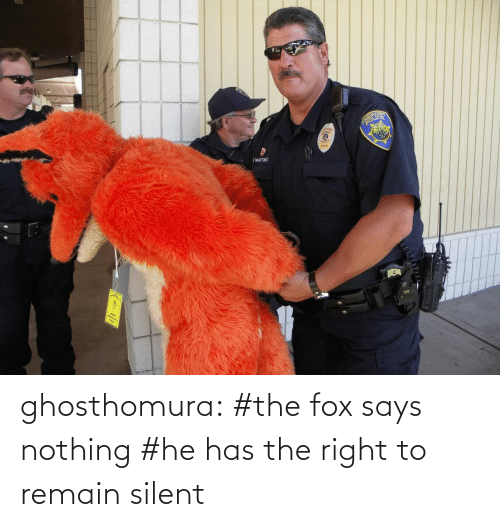 Remain Silent: G MARATNEZ ghosthomura:  #the fox says nothing #he has the right to remain silent
