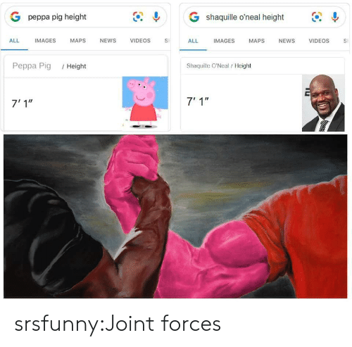 """News, Tumblr, and Videos: G shaquille o'neal height  G peppa pig height  IMAGES  ALL  IMAGES  MAPS  NEWS  VIDEOS  VIDEOS  ALL  MAPS  NEWS  S  Shaquille O'Neal/ Height  Peppa Pig  /Height  7' 1""""  7'1"""" srsfunny:Joint forces"""