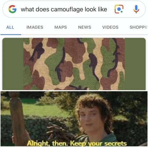 Memes, News, and Videos: G what does camouflage look like  !  ALL IMAGES MAPS NEWS  VIDEOS  SHOPPI  Alright, then. K  our secrets