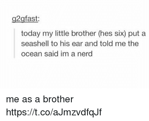 Memes, Nerd, and Ocean: g2gfast  today my little brother (hes six) put a  seashell to his ear and told me the  ocean said im a nerd me as a brother https://t.co/aJmzvdfqJf