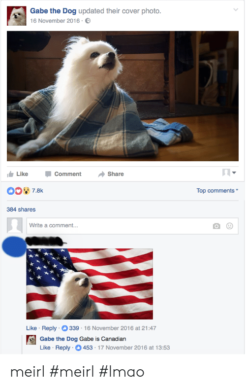 Lmao, Canadian, and MeIRL: Gabe the Dog updated their cover photo.  16 November 2016  LikeCommentShare  Top comments  384 shares  Write a comment...  Like . Reply-O 339-16 November 2016 at 21:47  Gabe the Dog Gabe is Canadian  Like Reply 453 17 November 2016 at 13:53 meirl #meirl #lmao