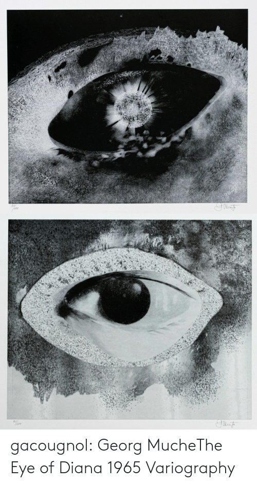 diana: gacougnol: Georg MucheThe Eye of Diana 1965 Variography