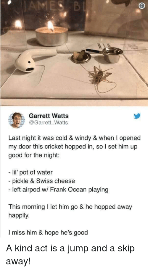 Frank Ocean, Cricket, and Good: Garrett Watts  @Garrett Watts  Last night it was cold & windy & when I opened  my door this cricket hopped in, so set him up  good for the night:  - l  lil' pot of water  pickle & Swiss cheese  - left airpod w/ Frank Ocean playing  This morning I let him go & he hopped away  happily.  I miss him & hope he's good