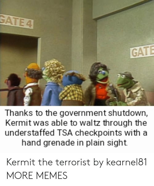 The Terrorist: GATE  Thanks to the government shutdown,  Kermit was able to waltz through the  understaffed TSA checkpoints with a  hand grenade in plain sight Kermit the terrorist by kearnel81 MORE MEMES