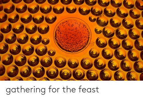 gathering: gathering for the feast