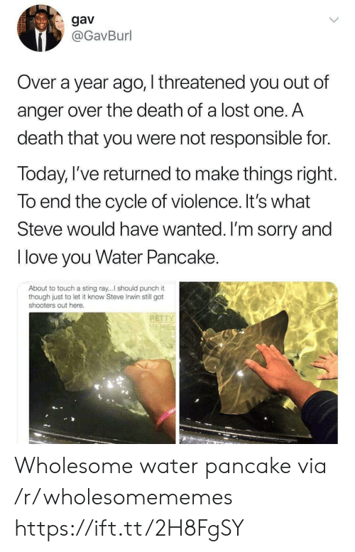 petty: gav  @GavBurl  Over a year ago, I threatened you out of  anger over the death of a lost one. A  death that you were not responsible for.  Today, I've returned to make things right.  To end the cycle of violence. It's what  Steve would have wanted. I'm sorry and  T love you Water Pancake.  About to touch a sting ray...I should punch it  though just to let it know Steve Irwin still got  shooters out here.  PETTY  MEMES Wholesome water pancake via /r/wholesomememes https://ift.tt/2H8FgSY