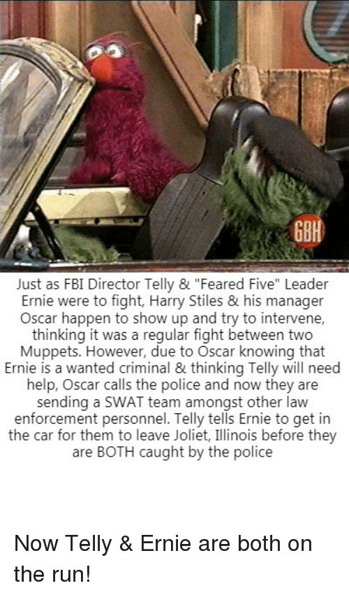 "Fbi, The Muppets, and Police: GBH  Just as FBI Director Telly & ""Feared Five"" Leader  Ernie were to fight, Harry Stiles & his manager  Oscar happen to show up and try to intervene,  thinking it was a reqular fight between two  Muppets. However, due to Oscar knowing that  Ernie is a wanted criminal & thinking Telly will need  help, Oscar calls the police and now they are  sending a SWAT team amongst other lavw  enforcement personnel. Telly tells Ernie to get in  the car for them to leave Joliet, Illinois before they  are BOTH caught by the police Now Telly & Ernie are both on the run!"