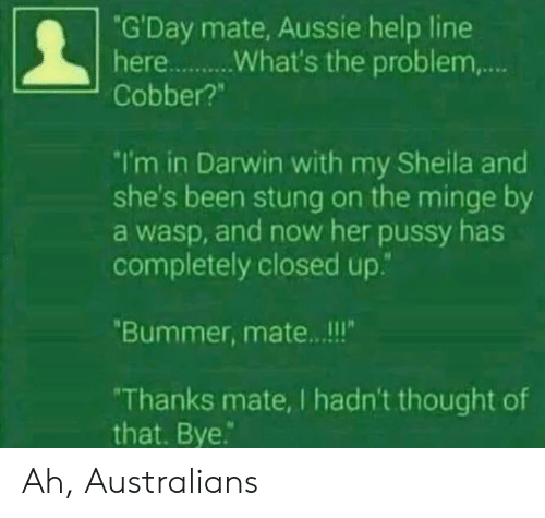 """bummer: """"G'Day mate, Aussie help line  Cobber?""""  I'm in Darwin with my Sheila and  she's been stung on the minge by  a wasp, and now her pussy has  completely closed up.""""  Bummer, mate.. .!!  Thanks mate, I hadn't thought of  that. Bye. Ah, Australians"""