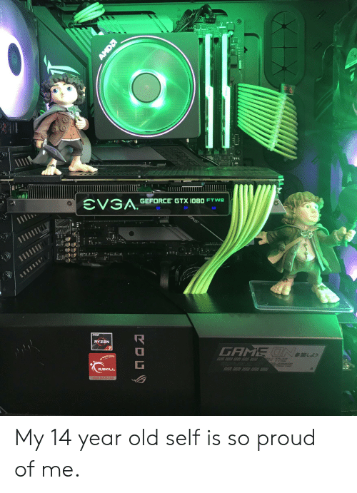 Game, Old, and Proud: GEFORCE GTX I080 FTW2  M  EVGA.  CNS  AMDD  GAME UNema  RYZEN  G.SKILL  www.gskiLcom My 14 year old self is so proud of me.