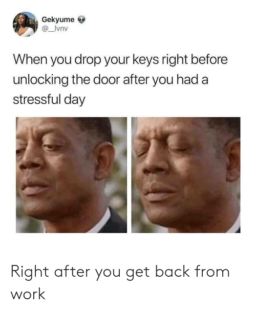 Work, Back, and Day: Gekyume  @_lvnv  When you drop your keys right before  unlocking the door after you had a  stressful day Right after you get back from work