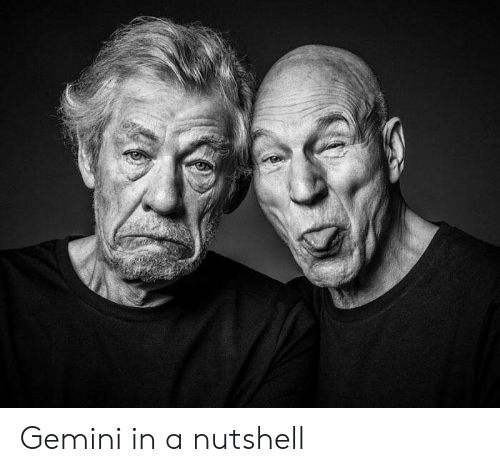 Gemini, In a Nutshell, and Nutshell: Gemini in a nutshell